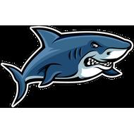 Наклейка Акула-019, фото 1