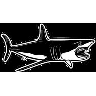 Наклейка Акула-024, фото 1