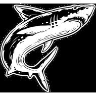 Наклейка Акула-026, фото 1
