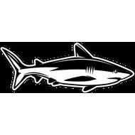 Наклейка Акула-033, фото 1