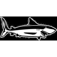 Наклейка Акула-034, фото 1