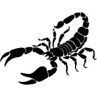 Наклейка Скорпион-019, фото 1