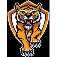 Наклейка Тигр-081, фото 1