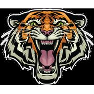Наклейка Тигр-083, фото 1