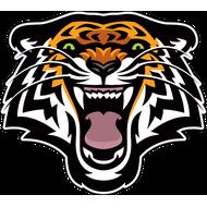 Наклейка Тигр-084, фото 1