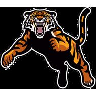 Наклейка Тигр-085, фото 1