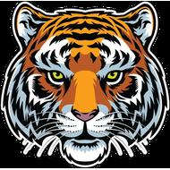 Наклейка Тигр-086, фото 1