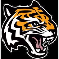 Наклейка Тигр-088, фото 1