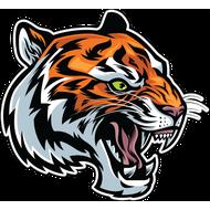 Наклейка Тигр-089, фото 1