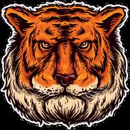 Наклейка Тигр-090, фото 1