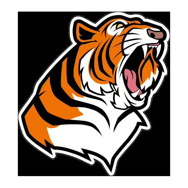 Наклейка Тигр-007, фото 1